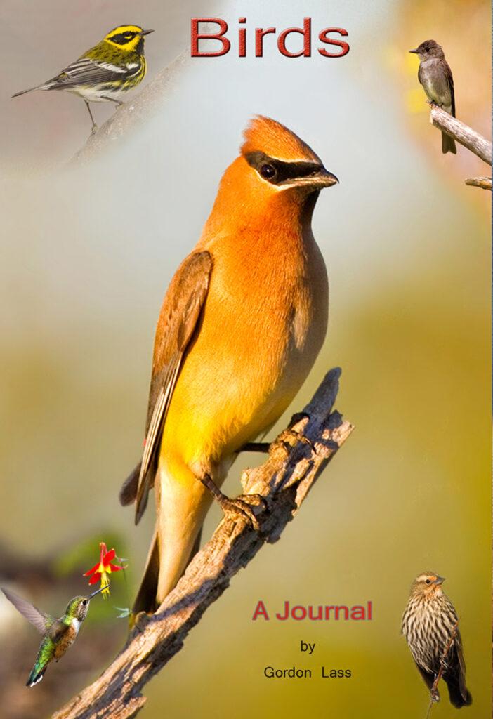 Journal Birds by Photographer Gordon Lass
